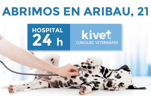 Hospital veterinario 24 horas de Aribau