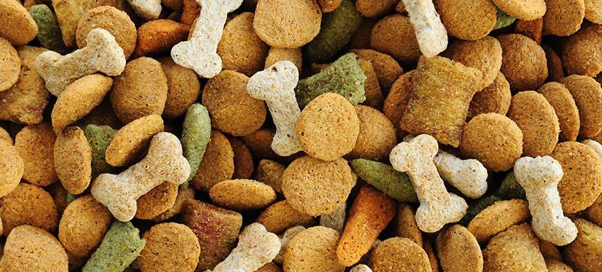 ¿Qué son las dietas de prescripción veterinaria?