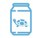 ¿Cómo debes alimentar a tu tortuga?