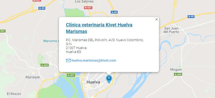 Clínica veterinaria Kivet donde se atendió a Ratatouille