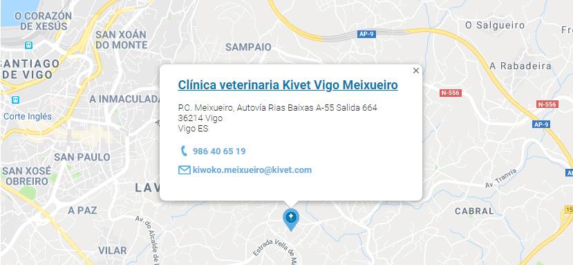 Servicios veterinarios en Clínica veterinaria Kivet Vigo Meixueiro