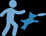 ejercicio físico mascotas esterilizadas