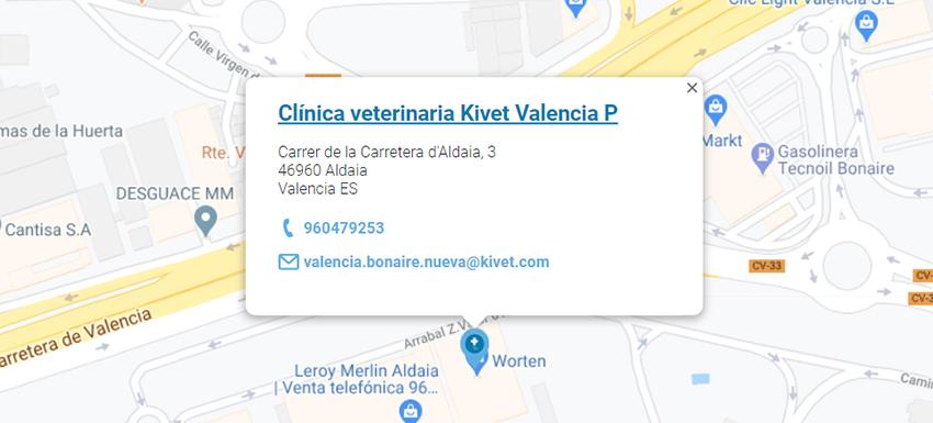clinica kivet bonaire